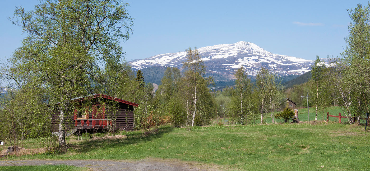 Åre Camping I Sommarskrud