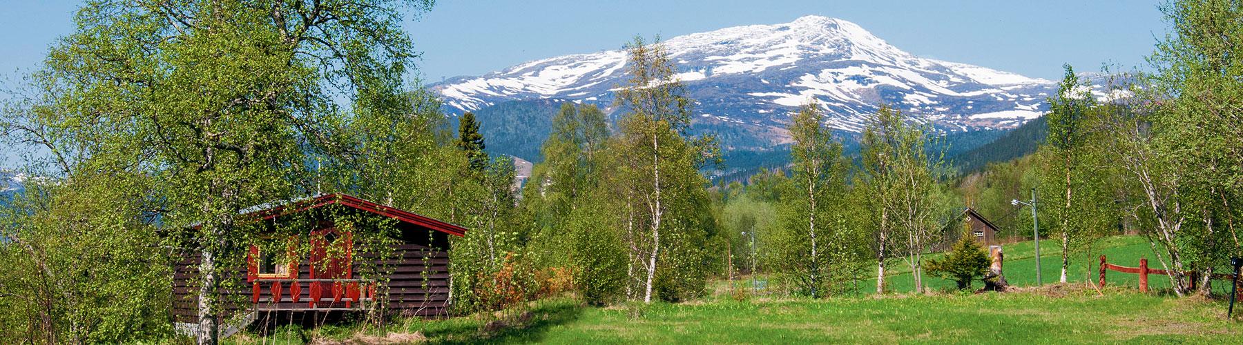 Sommarvy över Åreskutan